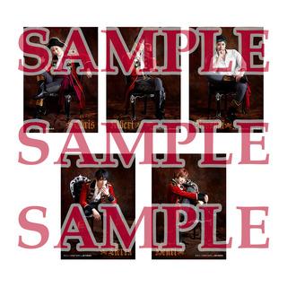 _stm_cg_all_sample.jpg